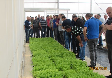 A delegation of tobacco farmers in Turkey to brief on the industry's latest technologies