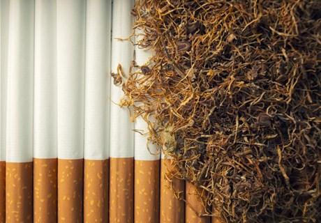 Importing New Tobacco Products into Lebanon